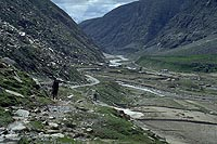 Koksar valley, Himachalpradesh (1996)