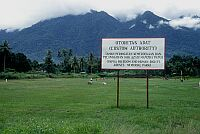 Cyclop Mountains, West Papua (2002)