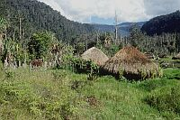 Pabilolo village, West Papua (2002)