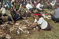 church opening ceremony, Wamena, West Papua (2002)