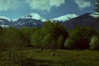 Pirin Mountains, Bulgaria (1981)